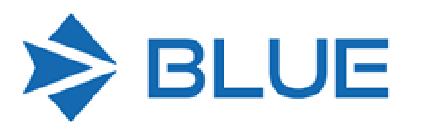 blue-software-logo-lg-2